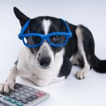 Andre + Associates, PC's Under-Utilized Pet Tax Deductions